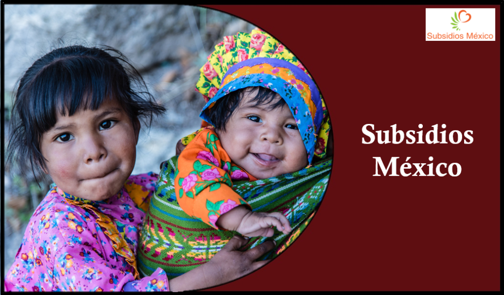 Subsidios Mexicanos 2020