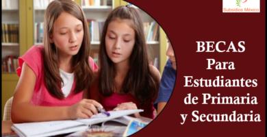 becas para estudiantes de primaria y secundaria